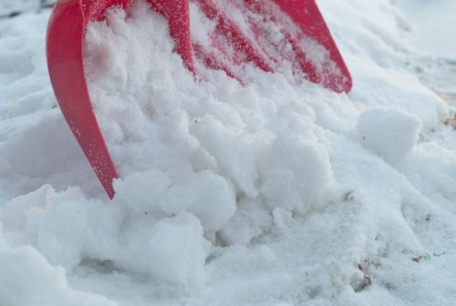 青森市の便利屋「陽気屋本舗」なら草刈り・草むしり・片付けなど些細なことでもご依頼可能です〜除雪・雪下ろしのご依頼も大歓迎〜