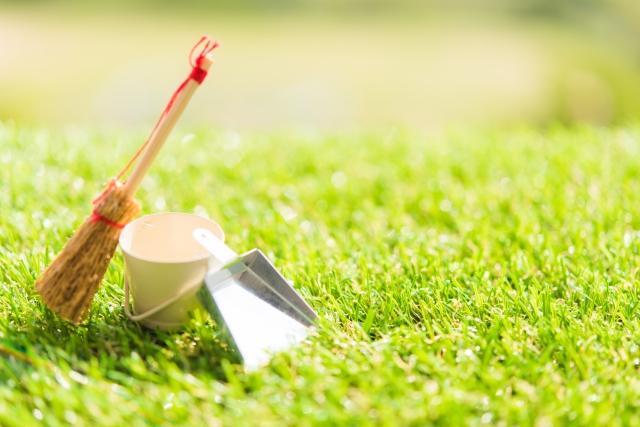 年末の大掃除は何でも屋の手をかりよう!〜雪片付け、不用品処分、除草もお任せ〜