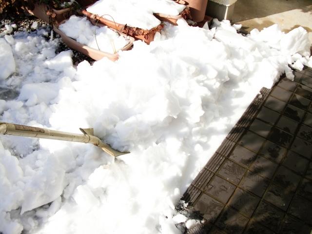青森市で何でも屋「陽気屋本舗」は排雪の経験も豊富なので安心です